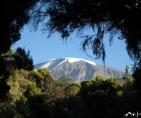 Tansania Kilimanjaro 5895